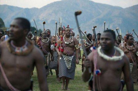 Mswati 6 Как выбрать себе жену или 70 000 голых девственниц