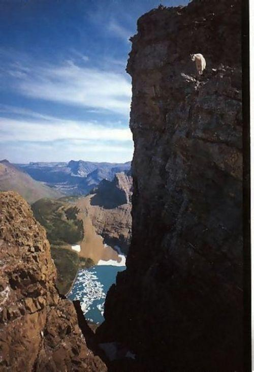 http://unnatural.ru/images/Rock%20Climbers/10.jpg