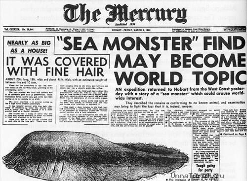 6 Морские чудовища, выброшенные на берег