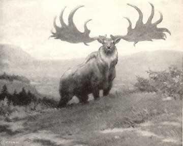 Irish Топ 5. Самые удивительные вымершие животные