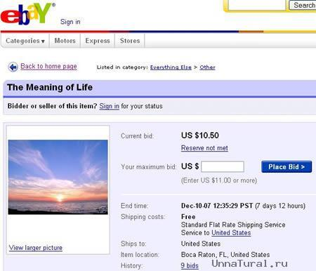 1 Топ 20. Самые необычные лоты на аукционе ebay