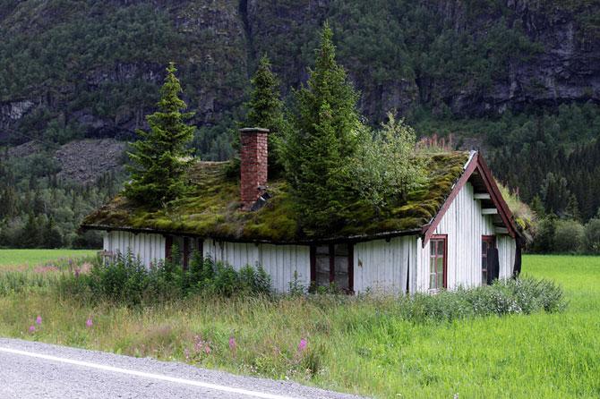 1 Зеленые крыши Норвегии