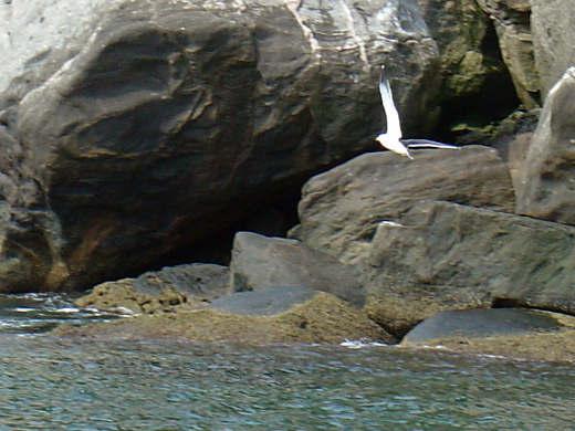 4 Кеймада Гранди. Самый опасный остров в мире