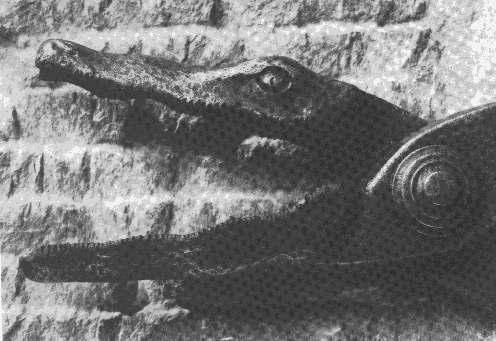 24 Самые необычные и ужасные пытки в истории человечества