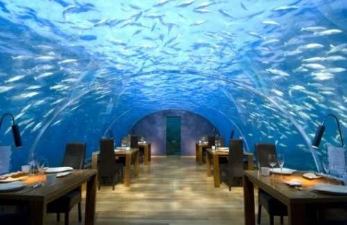 7 Топ 10. Самые необычные рестораны