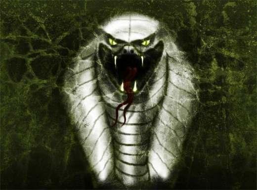 Призрак мирового змея.  Картинки.