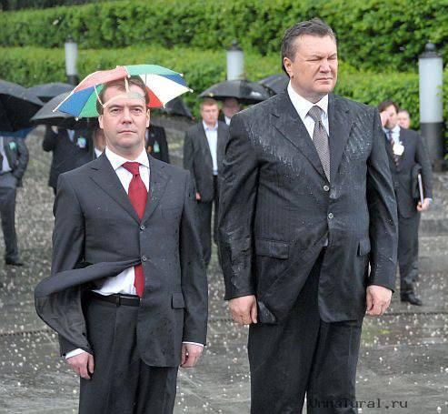 jaba4 Упавший на Януковича венок продан на интернет аукционе