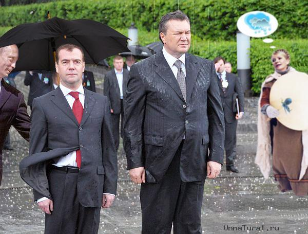 jaba6 Упавший на Януковича венок продан на интернет аукционе