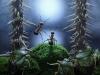 thumbs andrey pavlov 13 Тайная жизнь муравьев, сфотографированная Андреем Павловым