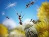 thumbs andrey pavlov 7 Тайная жизнь муравьев, сфотографированная Андреем Павловым