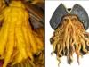 thumbs buddhas hand 2 Топ 12. Самые жуткие растения планеты Земля