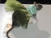 thumbs fancy rat convention 8 В Нью Йорке состоялся первый в мире Крысиный показ мод