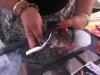 thumbs fancy rat convention 9 В Нью Йорке состоялся первый в мире Крысиный показ мод