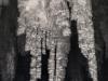 thumbs fb 9 Ледяные пейзажи иного мира, скрытого за стенами заброшенного здания