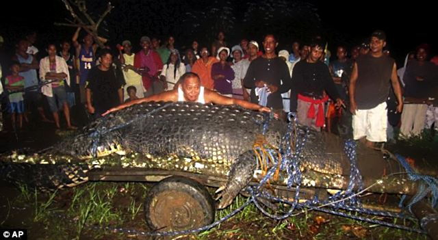 gigant croc 1 Самые крупные и удивительные открытия за 2012 год