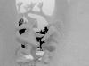 thumbs 3214831654 95a07c4dd1 z Самые удивительные и невероятные работы скульпторов со всего мира, ставшие жемчужинами Харбинского международного фестиваля ледяных и снежных скульптур