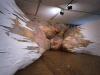 thumbs inst 27 Бразильский художник Энрике Оливейра 'пустил корни' в художественной галерее «Национального музея искусства Африки»