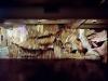 thumbs inst 30 Бразильский художник Энрике Оливейра 'пустил корни' в художественной галерее «Национального музея искусства Африки»