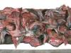 thumbs inst 54 Бразильский художник Энрике Оливейра 'пустил корни' в художественной галерее «Национального музея искусства Африки»