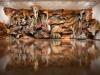 thumbs inst rice Бразильский художник Энрике Оливейра 'пустил корни' в художественной галерее «Национального музея искусства Африки»