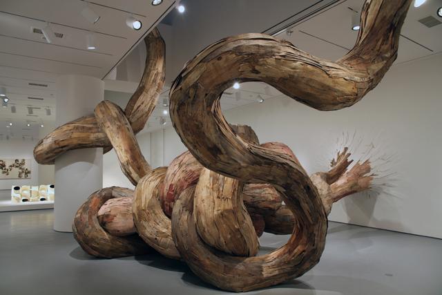 wash3 Бразильский художник Энрике Оливейра 'пустил корни' в художественной галерее «Национального музея искусства Африки»