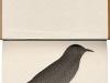 thumbs dghd Кайли Стиллман: искусство резьбы по книжным стопкам