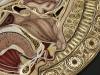 thumbs l n 15 Уроки художественной анатомии от Лизы Нильсон