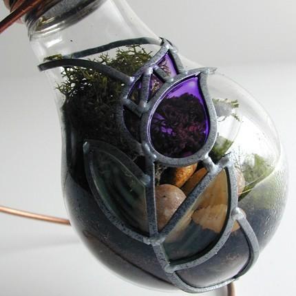 light bulb terrarium 3 5 Топ 5: живые террариумы в лампочках