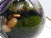 thumbs light bulb terrarium 3 1 Топ 5: живые террариумы в лампочках