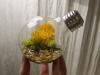 thumbs light bulb terrarium 4 1 Топ 5: живые террариумы в лампочках