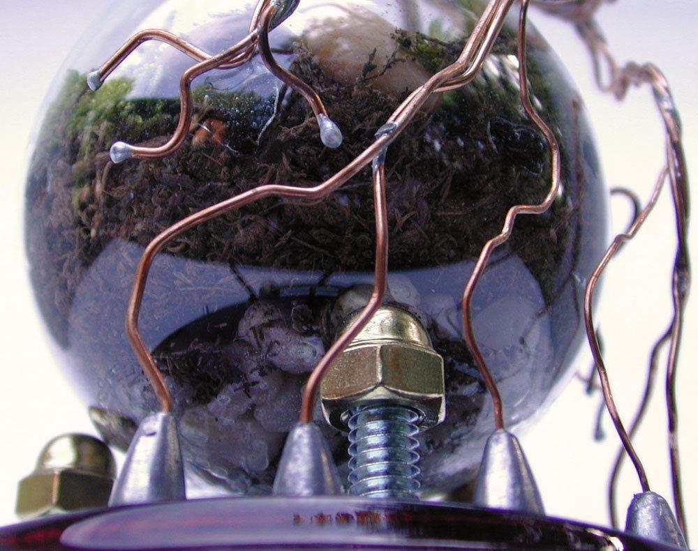 light bulb terrarium 1 1 Топ 5: живые террариумы в лампочках