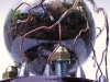 thumbs light bulb terrarium 1 1 Топ 5: живые террариумы в лампочках