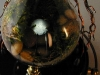 thumbs light bulb terrarium 1 3 Топ 5: живые террариумы в лампочках