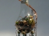 thumbs light bulb terrarium 1 4 Топ 5: живые террариумы в лампочках