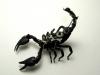 thumbs mike libby 15 Тайная жизнь муравьев, сфотографированная Андреем Павловым