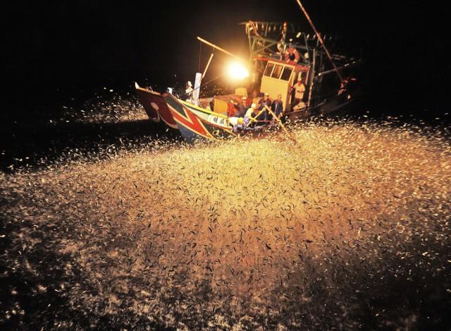 1 Лучшие фотографии за 2012 год по версии National Geographic