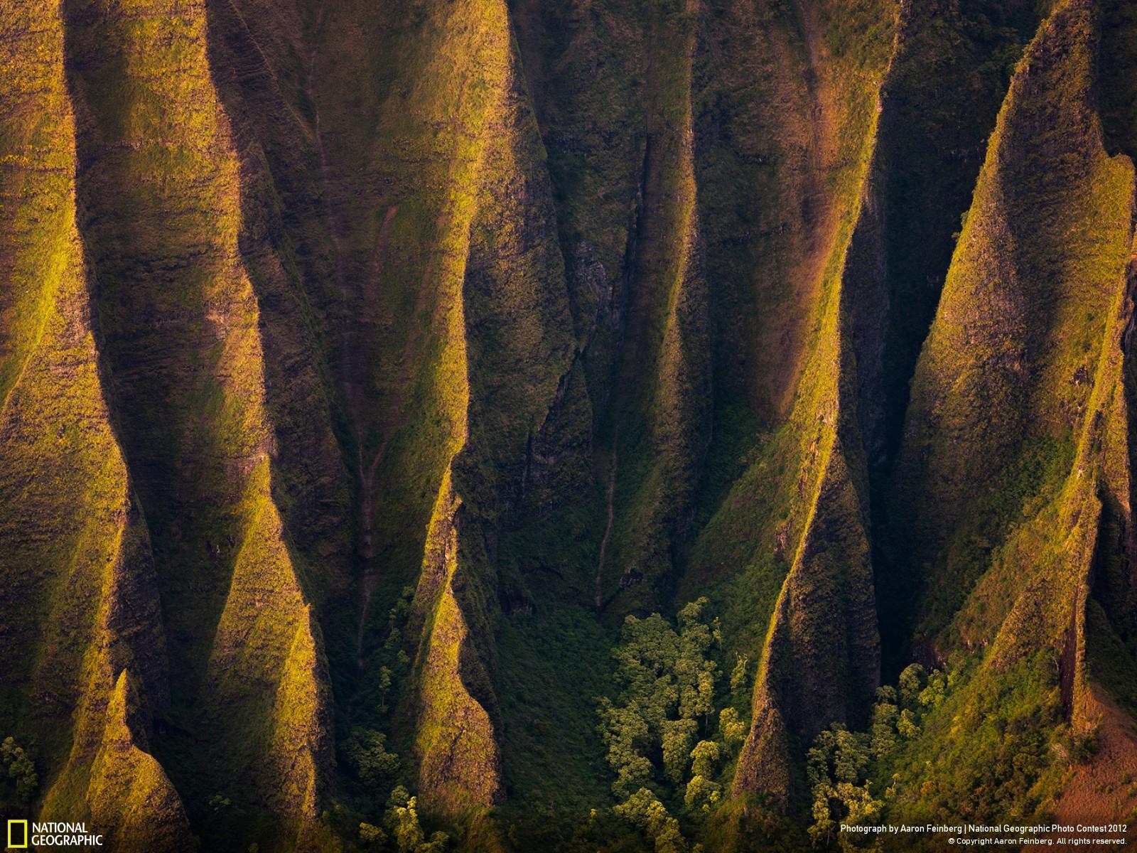 13 Лучшие фотографии за 2012 год по версии National Geographic