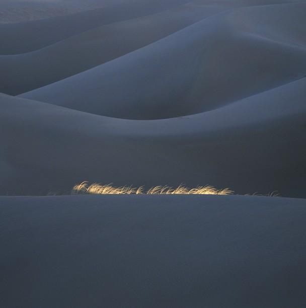 14 Лучшие фотографии за 2012 год по версии National Geographic