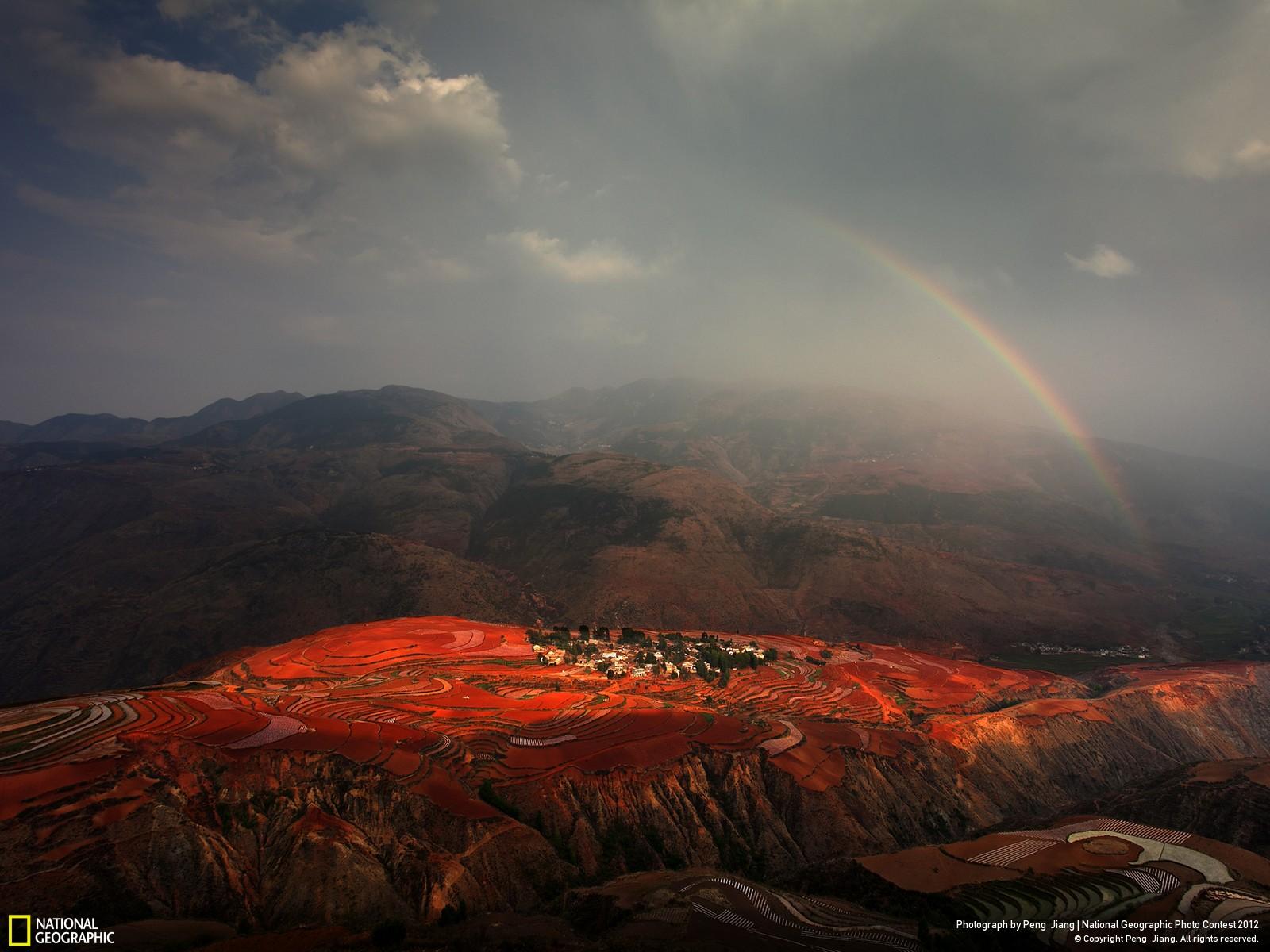 35 Лучшие фотографии за 2012 год по версии National Geographic