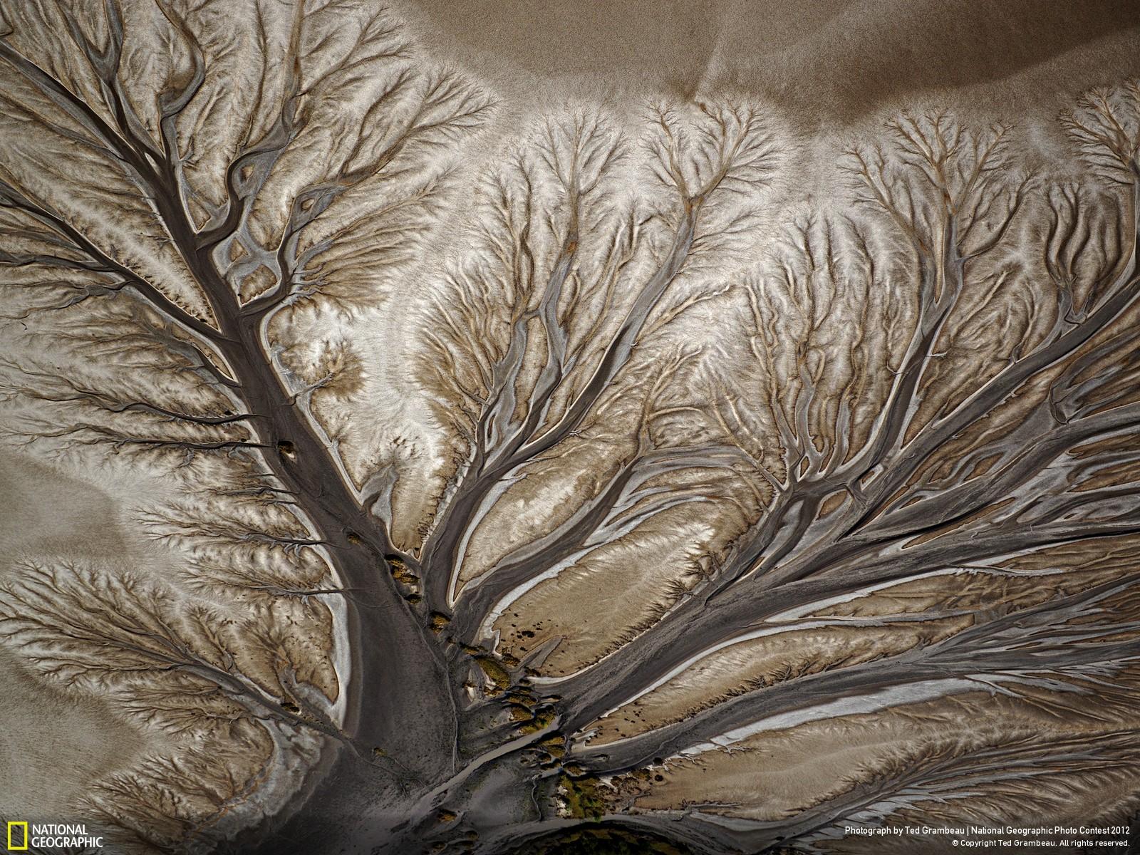 39 Лучшие фотографии за 2012 год по версии National Geographic