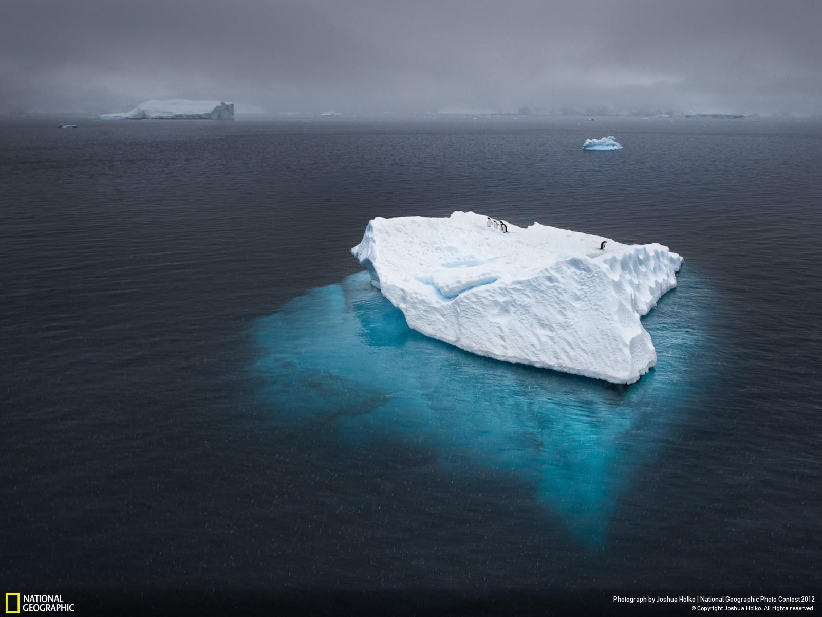 47 Лучшие фотографии за 2012 год по версии National Geographic