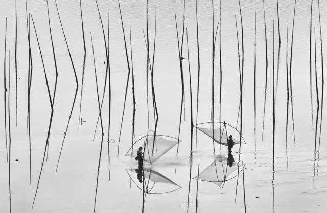 6 Лучшие фотографии за 2012 год по версии National Geographic