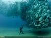 thumbs 52 Лучшие фотографии за 2012 год по версии National Geographic
