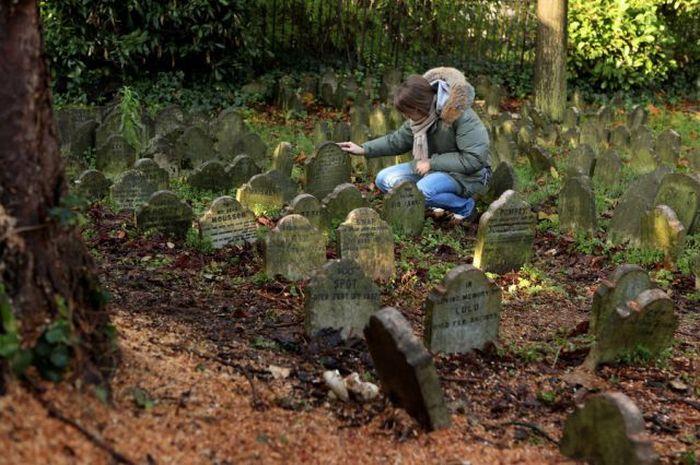pet cemetery hyde park 25 Кладбище домашних животных в Гайд Парке, Лондон