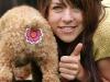 thumbs rear gear butt covers for pets 6 Попакрывашки для домашних животных