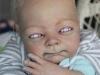 thumbs vamp doll 9 Искусство на грани безумия: куколки мисс Шанин