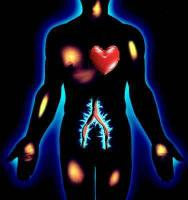 body.thumbnail 16 секретов твоего организма
