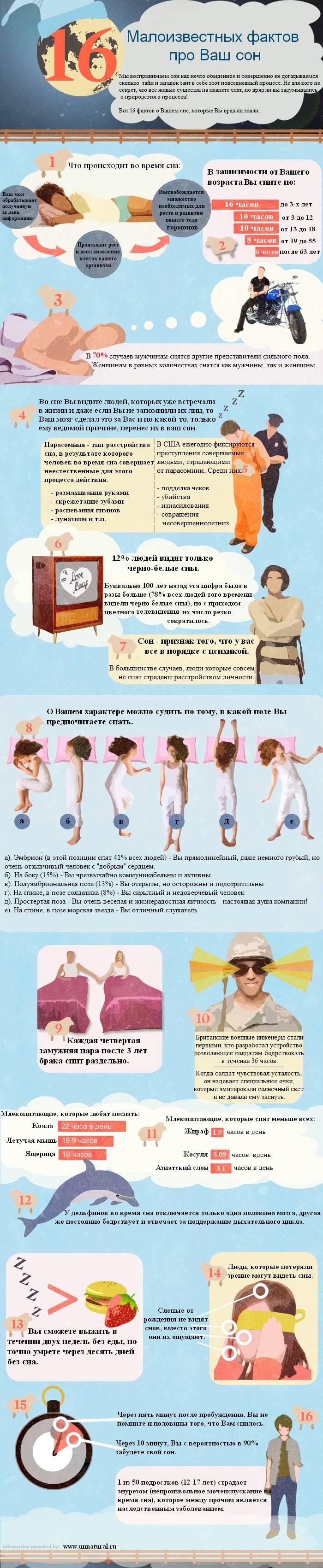 sleep facts1 16 Малоизвестных фактов про Ваш сон