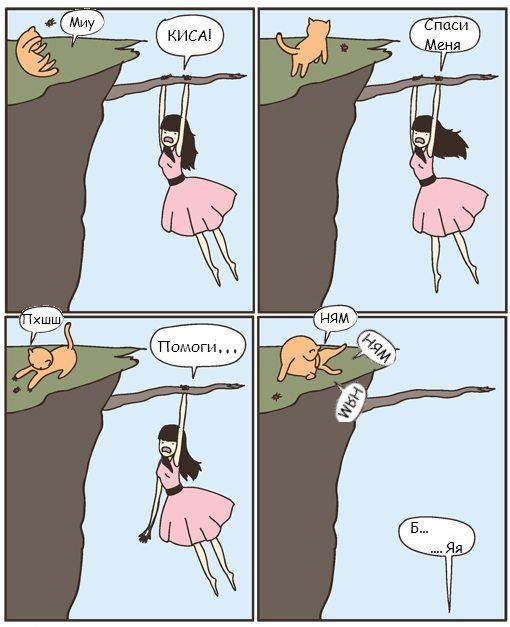 cat Чем отличаются кошки от собак?