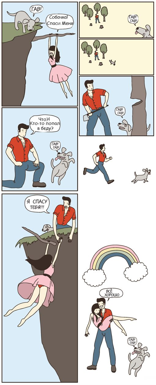 dog Чем отличаются кошки от собак?